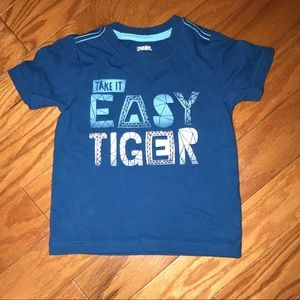 Gymboree toddler boy tee shirt size 12-18